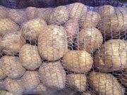 Картофель оптом. Большие объемы.